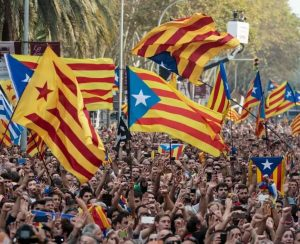 Supporters cheer majority referendum verdict in favour of Catalonia Independence from Spain